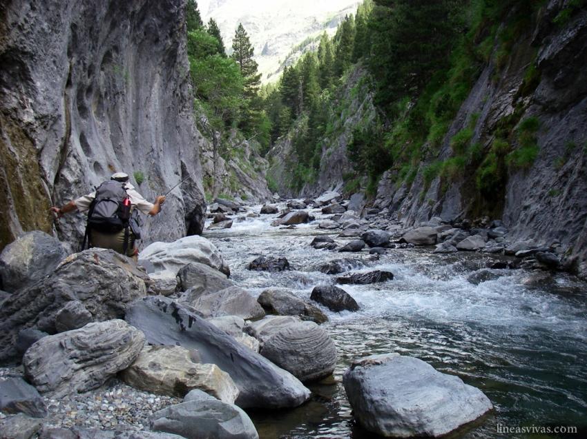 Mountain stream fishing