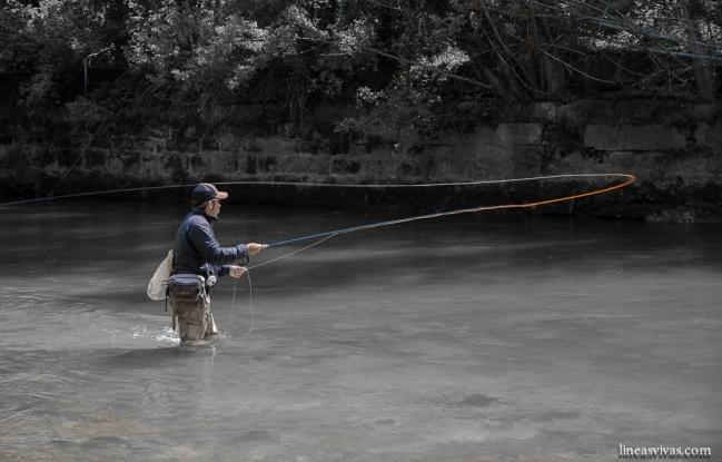 pescando entre muros